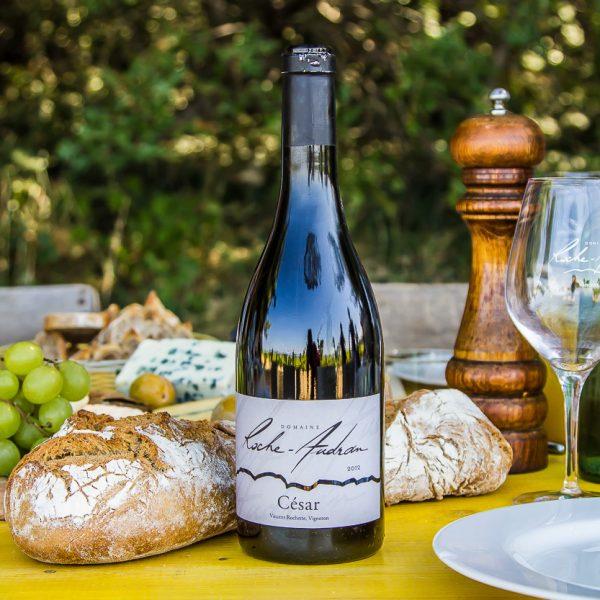 Lunch en wijndegustaties in de wijngaard